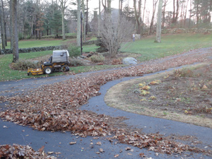 Mulching and Bark Blowing | Mike Lynch Enterprises