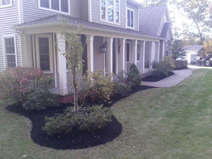 Professionally Installed Landscapes | Mike Lynch Enterprises