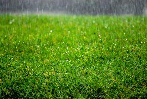 Irrigation rain sensors